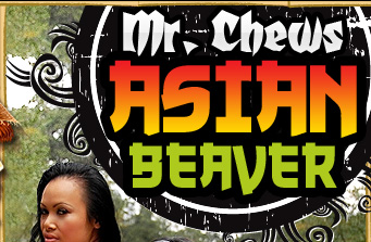Mr Chews Asian Beaver - XXX Asian Reality Porn Videos & Photos